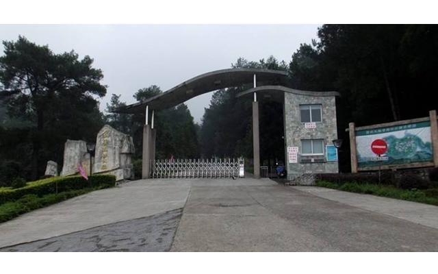 重庆九锅箐森林公园